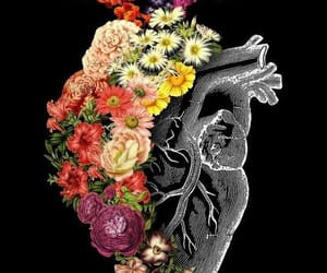 heart, flowers, and wallpaper image