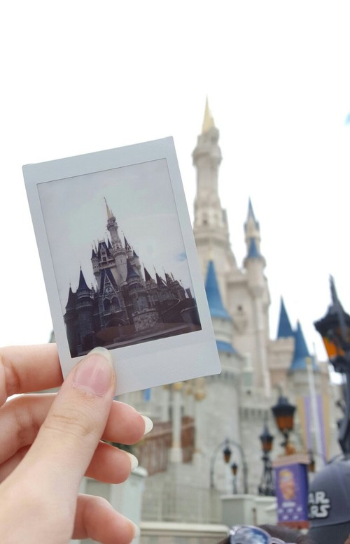 Animal kingdom, Walt Disney World, and epcot image