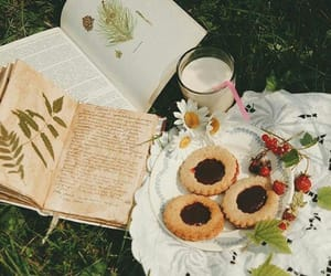 book and picnic image