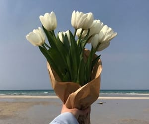 flowers, aesthetic, and sea image