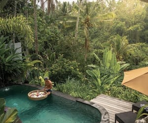 bali, indonesia, and lifestyle image