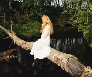 adventure, Dream, and fairy image