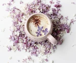 cappuccino, cozy, and stylish image