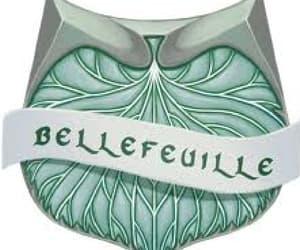 beauxbatons and bellefeuille image