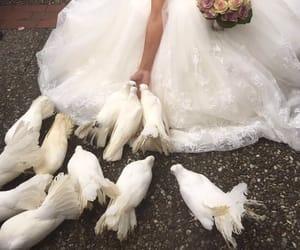 wedding, alternative, and inspiration image
