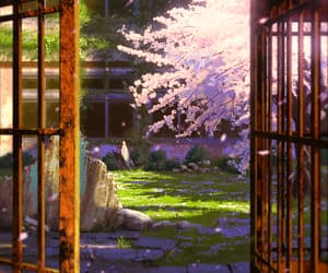 aesthetic, anime, and cherry blossoms image