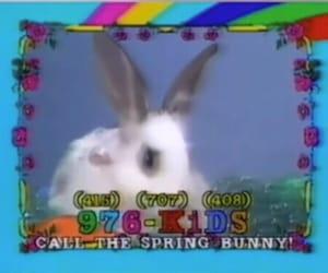 aesthetic, bunny, and grunge image