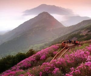 nature, mountains, and korea image