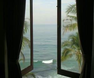 destinations, palms, and sea image