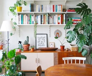 books, colorful, and home decore image
