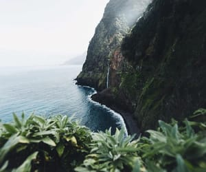 beautiful, explore, and green image