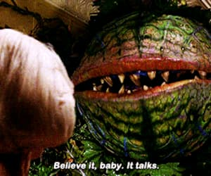 audrey, little shop of horrors, and gif image