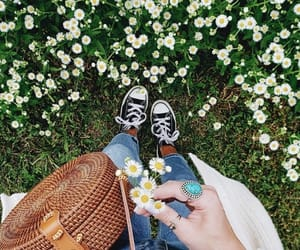 aesthetic, boho, and floral image