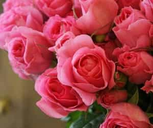 beautiful, bouquet, and pink roses image