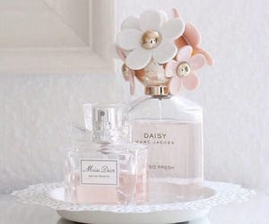 perfume, daisy, and dior image