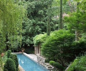garden, pool, and green image