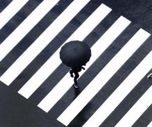 black, umbrella, and white image