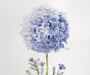 art, bloom, and drawing image