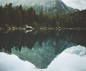 landscape, nature, and photography image