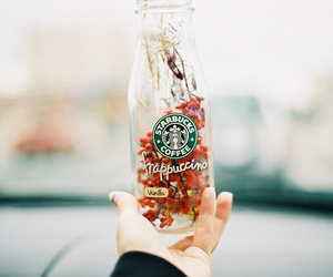starbucks, photography, and vintage image