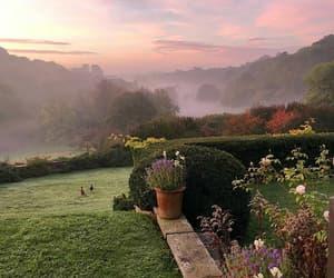 garden view lovely image