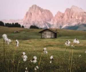 nature, grass, and mountains image