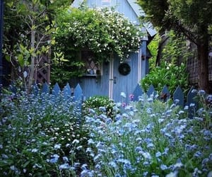 blue, lovely, and quaint image