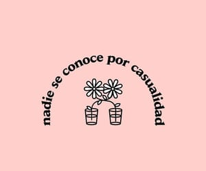 amor, flowers, and frases image