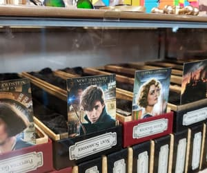 case, wand, and fantastic beasts image