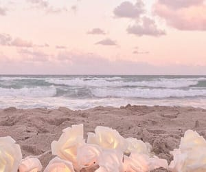 beach, flowers, and aesthetic image