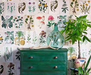 flowers, green, and home decor image