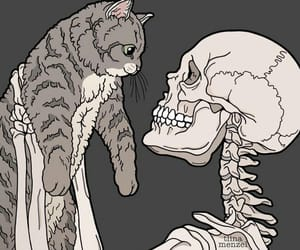 cat, drawing, and friend image