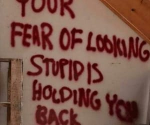 fear, quotes, and stupid image