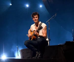 concert, shawn mendes, and tour image