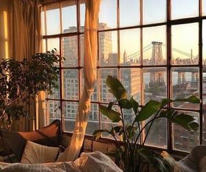 window, plants, and city image