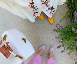 fashion, from above, and outfit image