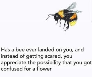 flowers, bee, and quotes image