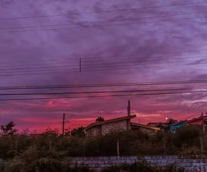 home, nature, and pink image