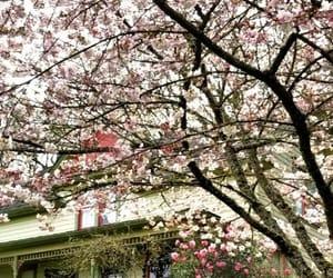 facades, garden, and flower image