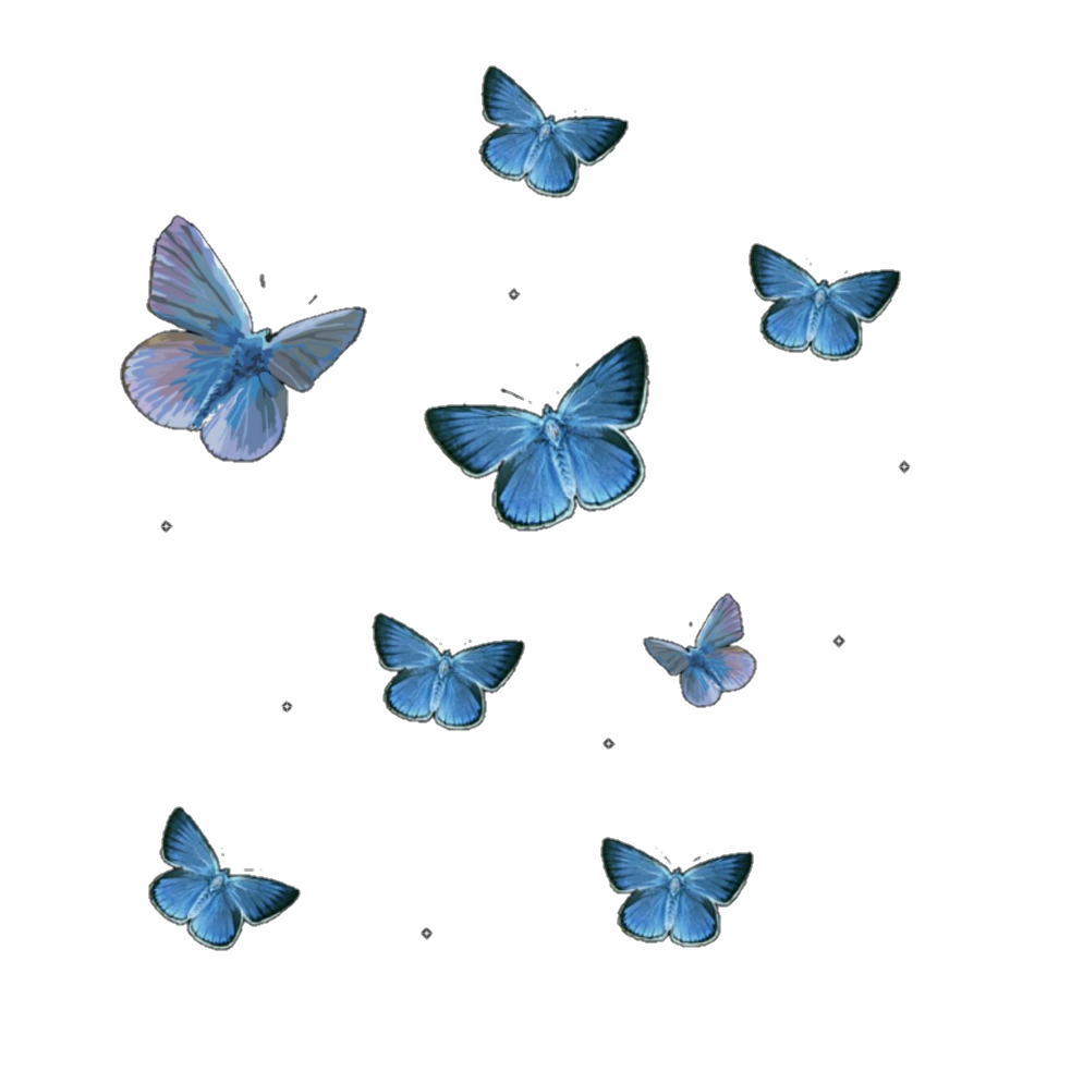 butterflies, butterfly, and editing image