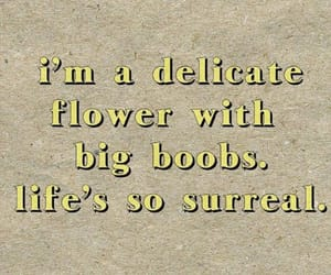 boobs, delicate, and flower image