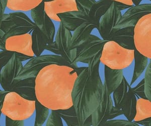 wallpaper, peach, and fruit image