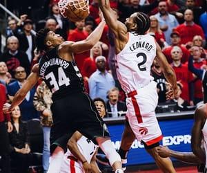 Basketball, NBA, and toronto raptors image
