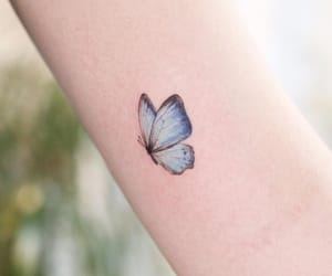 butterfly, picture, and tattoo image