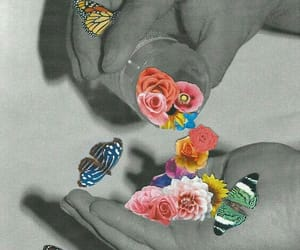 flowers, butterfly, and art image