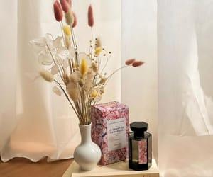 aesthetics, flowers, and vase image