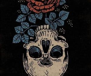 wallpaper, rose, and skull image