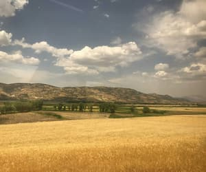 countryside, view, and yellow image