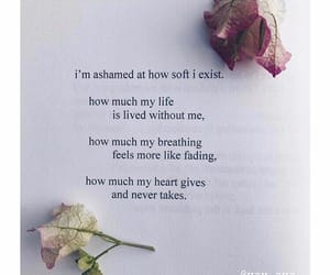 aesthetic, poem, and quote image