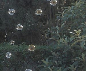 bubbles, theme, and grunge image